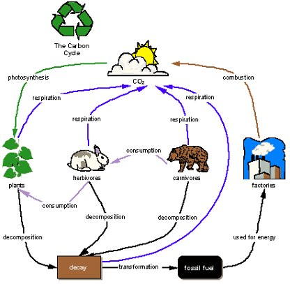 Visual information management this was made with the concept mapping software inspiration and is a sample from the inspiration site ill be talking more about how a rigid tree diagram ccuart Images
